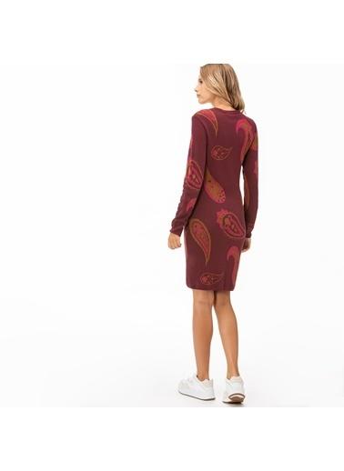 Lacoste Kadın  Elbise EF2041.41B Bordo